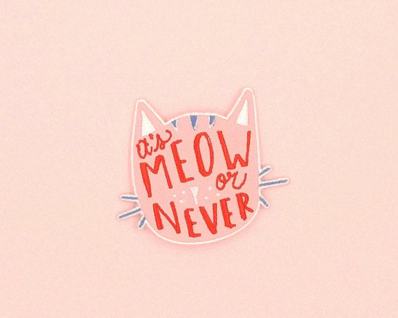 It's Meow or Never Cat Iron On Patch in Blush Pink