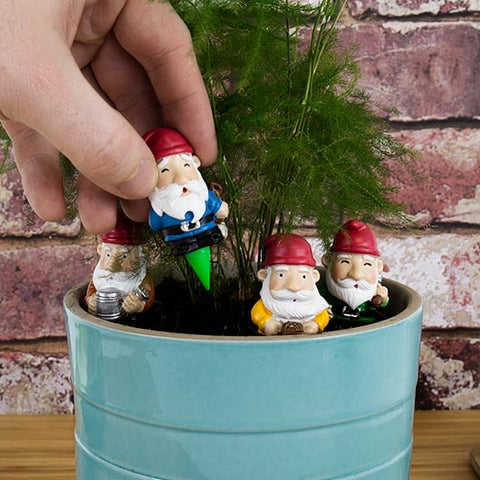 Mini Plant Pot Garden Gnomes | Tiny Funny Garden Gnomes on Pointy Sticks to Decorate Your Potted Plants