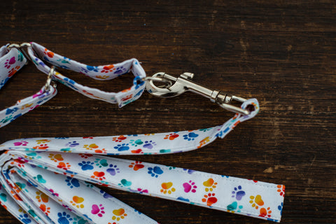 Leash & Collar (White w/ Colored Paws)