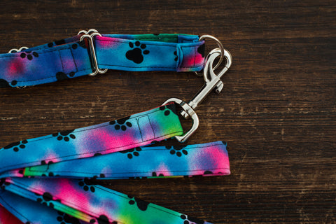 Leash & Collar (Tye-Dye w/ black paws)