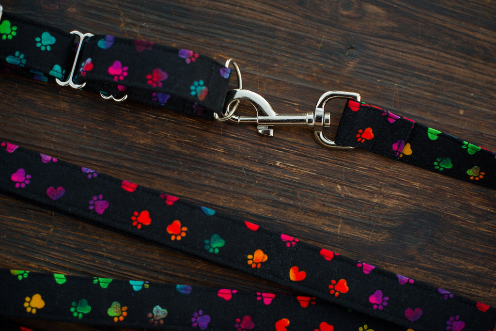 Leash & Collar (Black w/ Colored Paws)