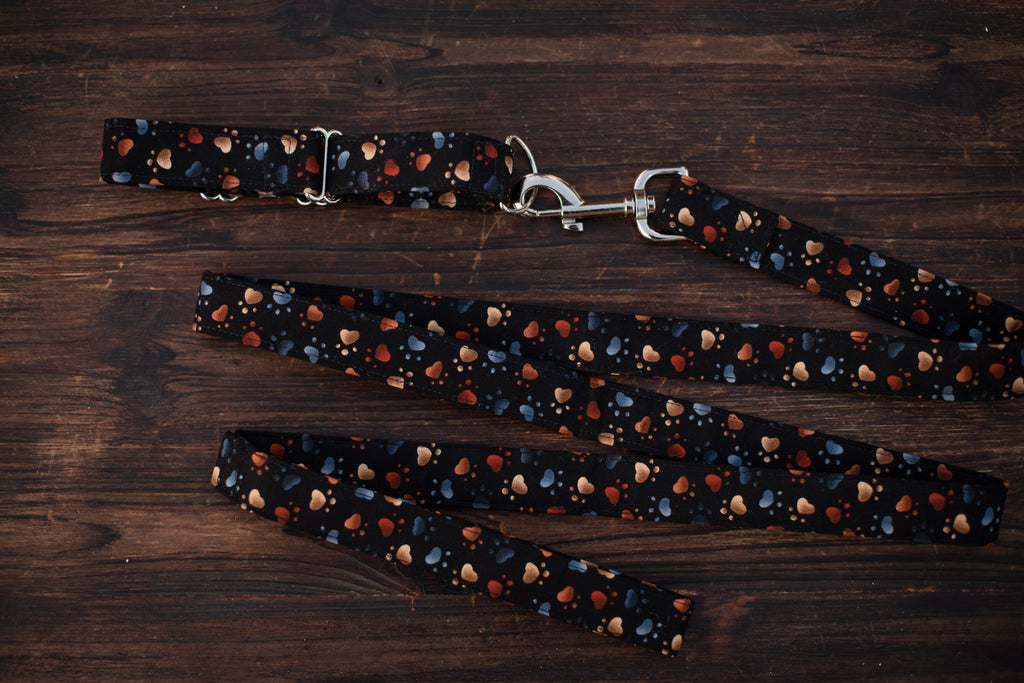 Leash & Collar (Black w/ Watercolor Paws)