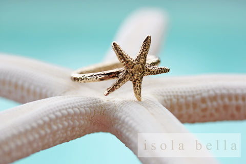 Starfish Series