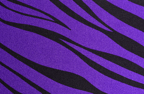 Purple Zebra Headband