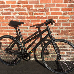 LHQ Single Speed Bicycle