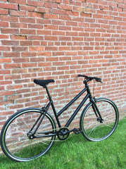 LHQ SingleSpeed Bicycle - Step Thru Model