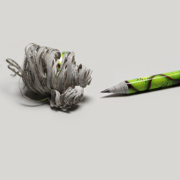 Fruits Recycled Newspaper Pencil - 2B - CW Pencil Enterprise