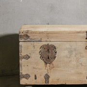 IFU0221-22 Vintage Indian Chest
