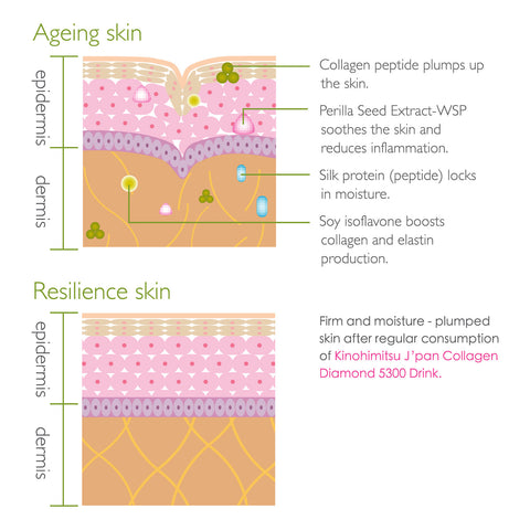 Collagen Diamond 5300 16's - Kinohimitsu Singapore