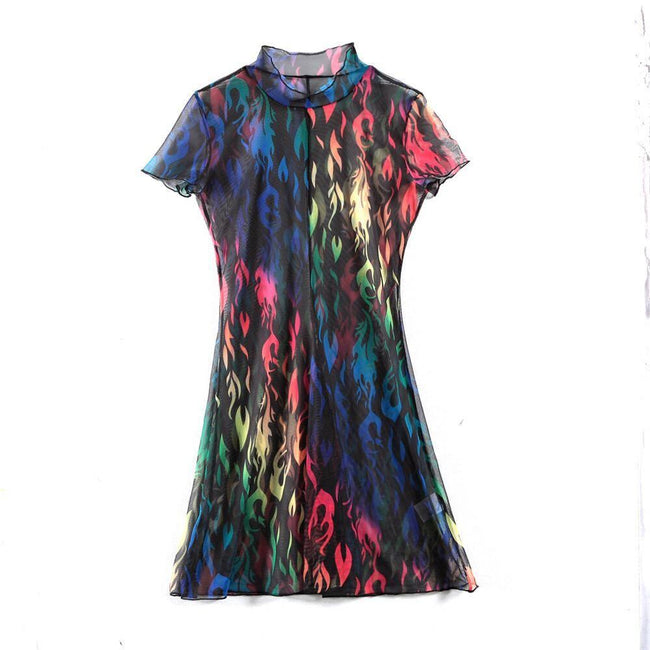 Multi Color Sheer Dress