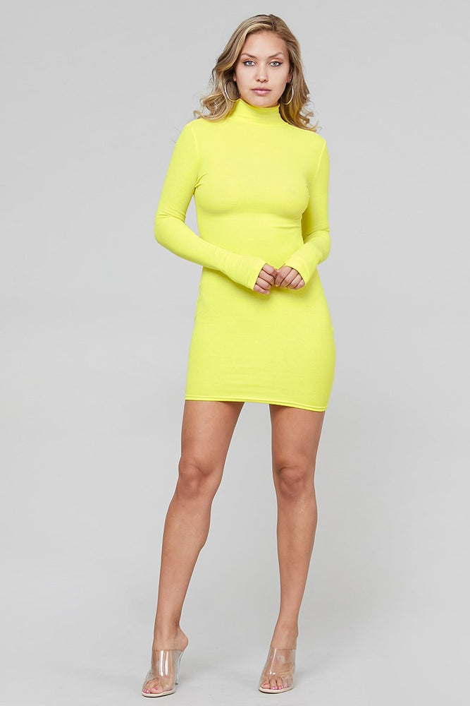 Long Sleeve Turtle Neck Ribbed Bodycon dress