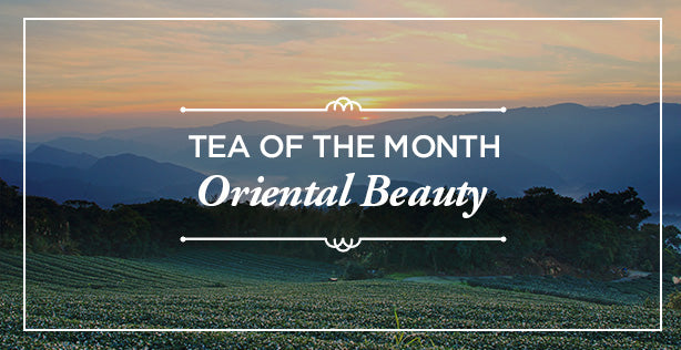 Tea Ave | Oriental Beauty