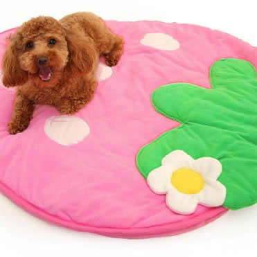 Strawberry Pet Sleeping Mat (2 sizes)