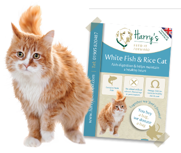 White Fish & Rice (Cat)