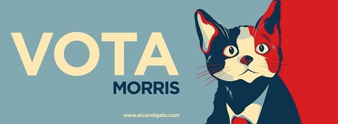 cat|morris|mayor|politics|mexico|2013