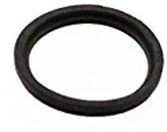 300481 Ardisam O-Ring Genuine Original Equipment Manufacturer (OEM) Part Earthquake Viper