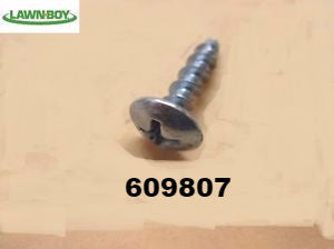 609807 OMC Lawn-boy SCREW