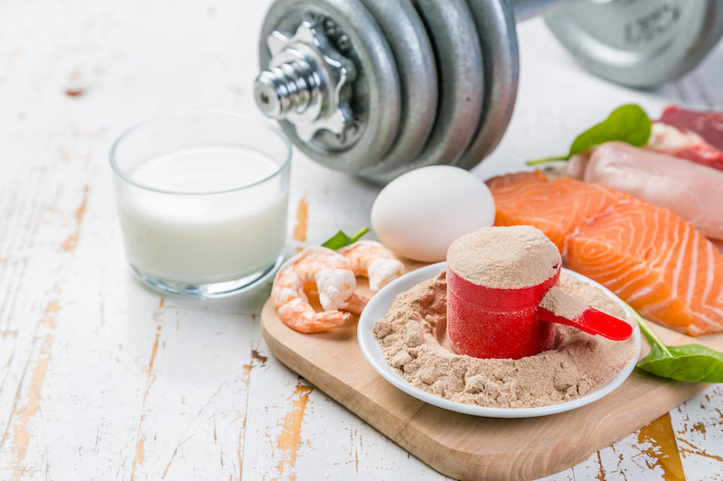 Array of high protein foods next to a plate and scoop of protein powder in front of a dumbbell