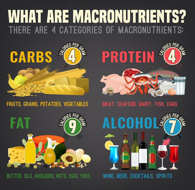 Graphic showing the four different types of macronutrients; carbohydrates, protein, fat, and alcohol