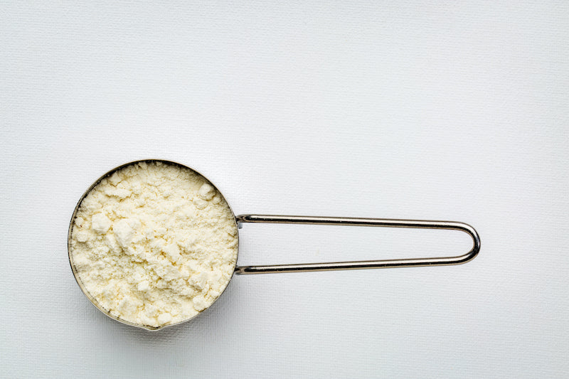 Whey protein in a metal scoop