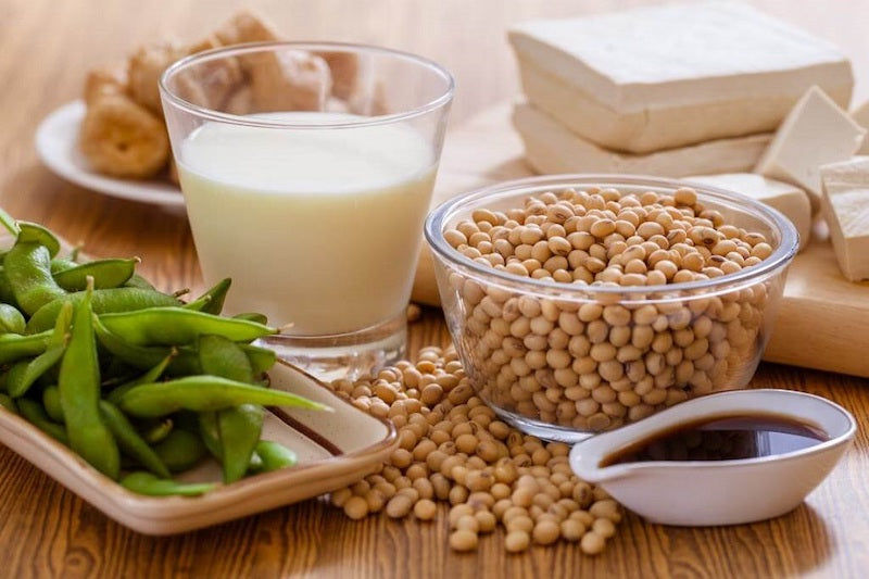 Soy plant on a table surrounded by soy beans and other soy products