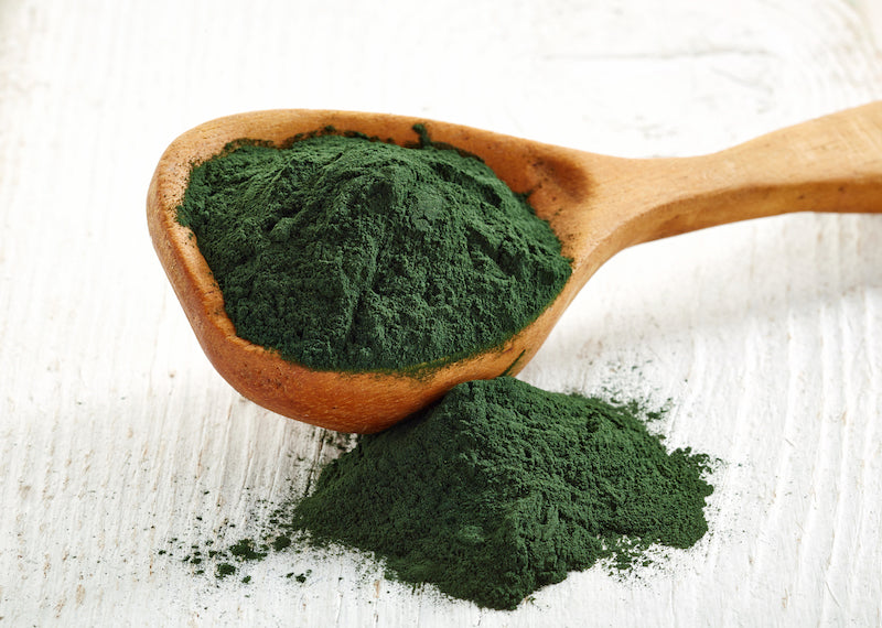 Wooden spoon containing a heap of spirulina against a white background