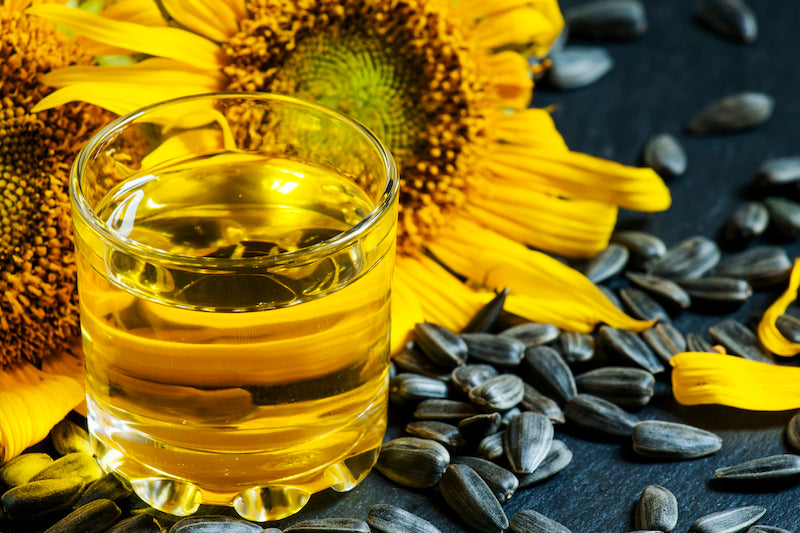Glass of sunflower oil, surrounded by sunflower seeds with a sunflower in the background