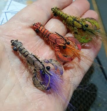 Pat Cohen sweet baby craw fly