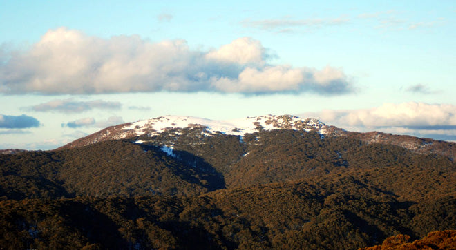 Mt Stirling