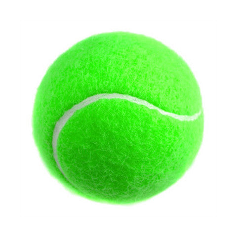 Catching Drill Tennis Ball - 12 Pack - Green