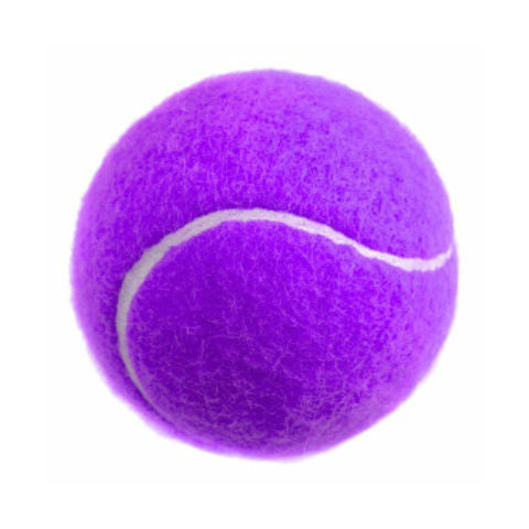 Catching Drill Tennis Ball - 12 Pack - Purple