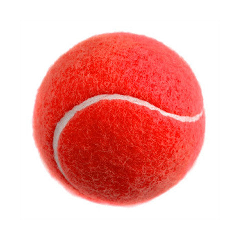 Catching Drill Tennis Ball - 12 Pack - Red