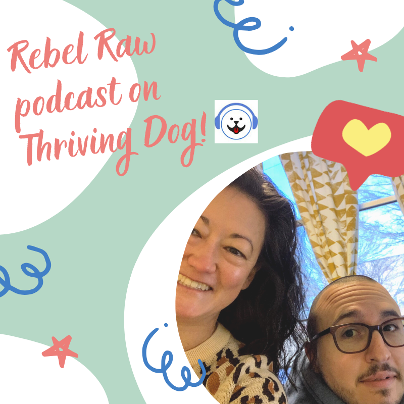 Making Raw Food Easy with Rebel Raw: Featured on Thriving Dog
