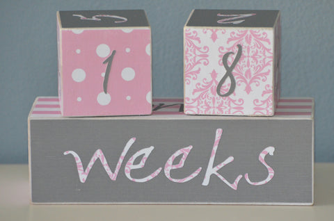 Baby Age Blocks Photo Blocks - Pink and Grey - Flutter Bunny Boutique, LLC  - 1