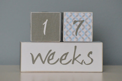 Baby Age Blocks Photo Blocks - Blue Gray and White - Flutter Bunny Boutique, LLC  - 1