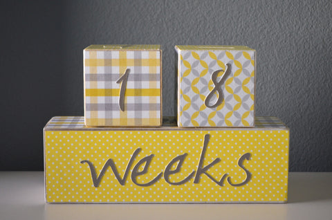Baby Age Blocks Photo Blocks - Yellow and Grey - Flutter Bunny Boutique, LLC  - 1