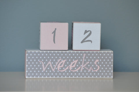 Baby Age Blocks Photo Blocks - White Gray Polka Dots Pink - Flutter Bunny Boutique, LLC  - 1