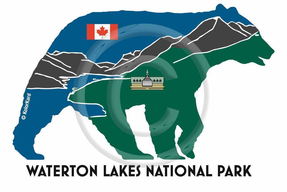 Waterton Bear Decal