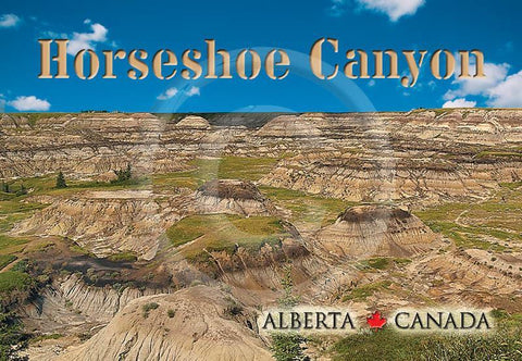 Horseshoe Canyon Metal Magnet