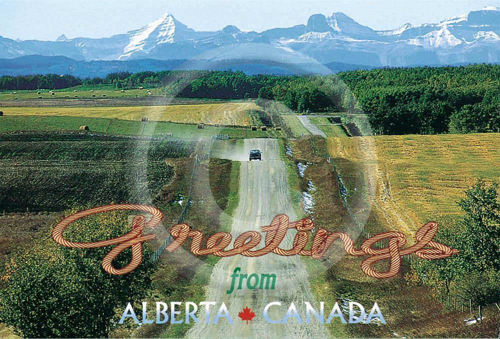 Greetings from Alberta 4x6 Card