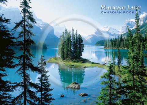 Maligne Lake Plain 5x7 Card