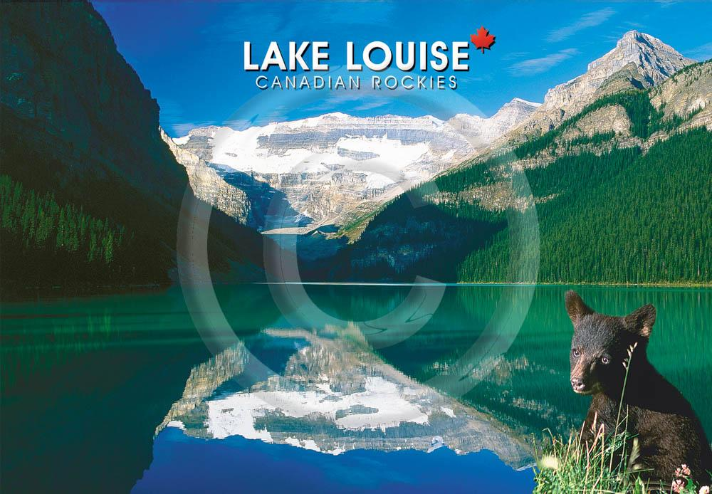 Lake Louise w. Bear 4x6 Card
