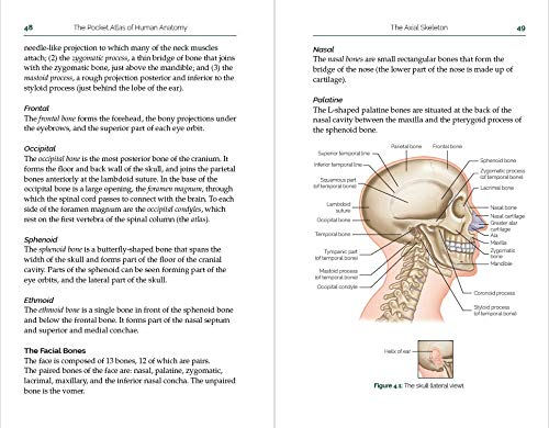 The Pocket Atlas of Human Anatomy Book