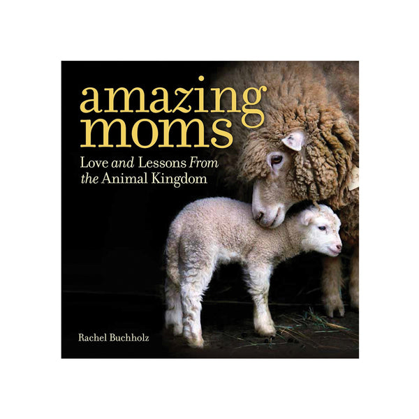 Amazing Moms: Love and Lessons From the Animal Kingdom