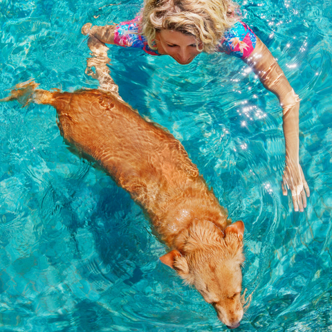 dog swim, women swimming with dog