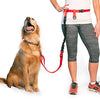 The Lunge Buster - Regular Dog System
