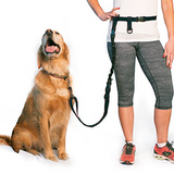 BUNDLE -  Regular Dog Leash + Regular Dog Lunge Buster