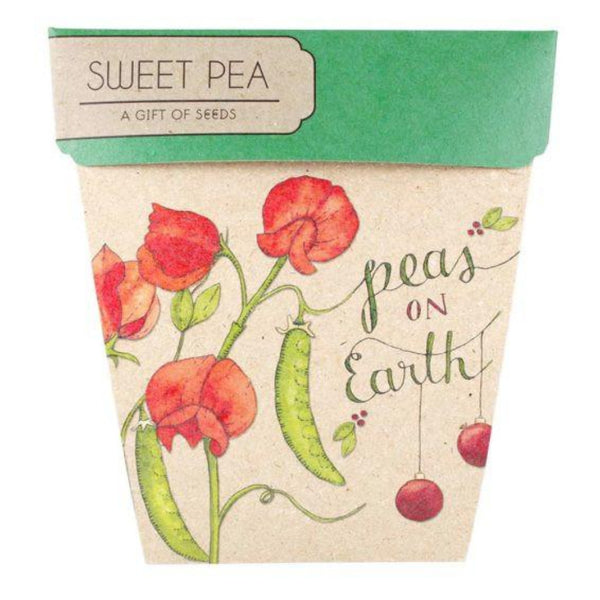 Gift of Seeds - Xmas Pea - Oxley and Moss