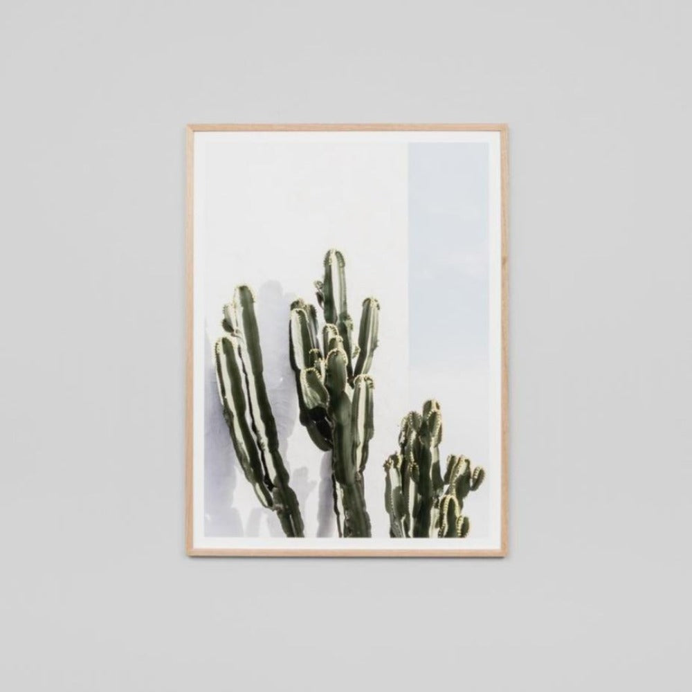 Cactus Resort Framed Print
