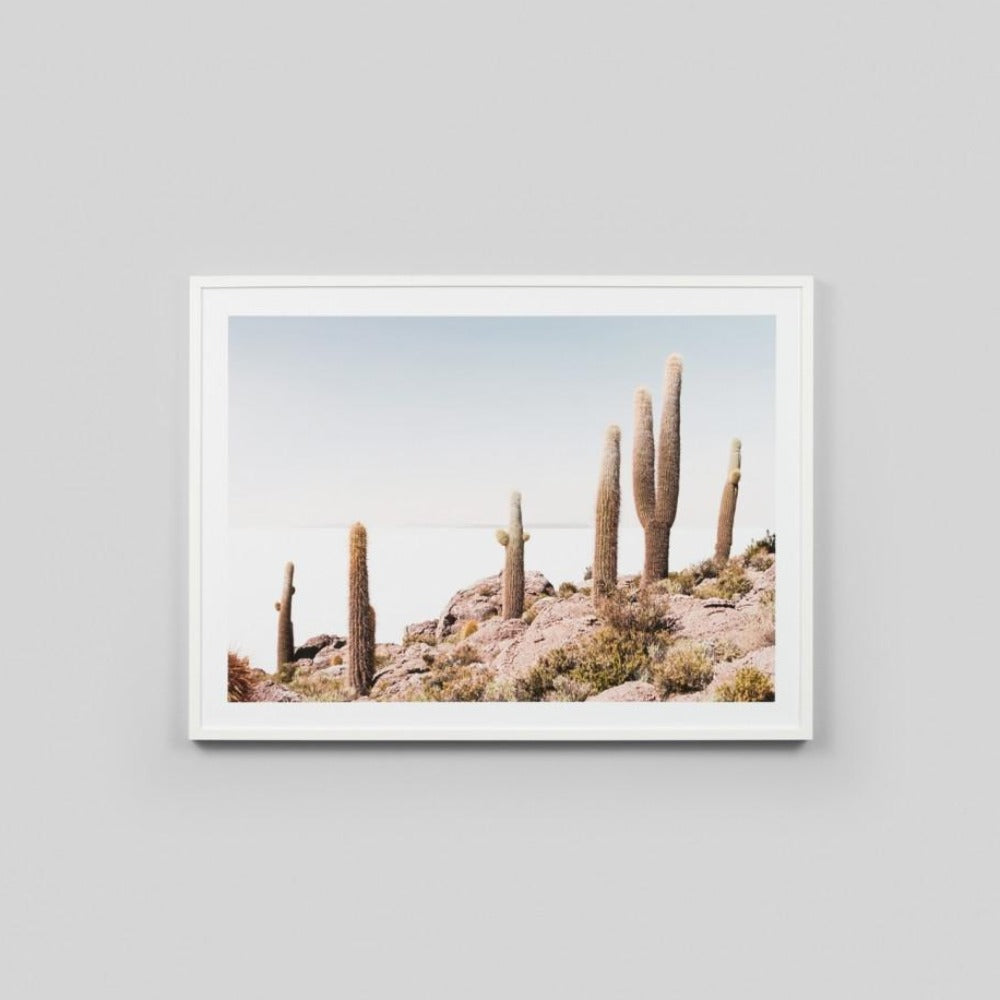 Framed Print - Cactus View - Oxley and Moss